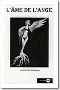 poesie-urbaine-jean-simon-brisebois-art-de-la-rue