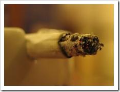 653132_cigarette