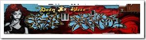 murale-graffiti-murals