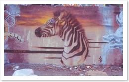 murale-graffitis-murales