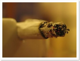 alcool-drogue-toxicomanie-alcoolique-toxicomane