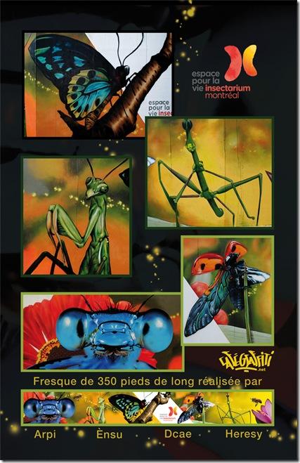 insectarium-stade-olympique-espace-pour-la-vie-insectarium