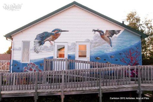 murale gaspesie fresque maison jeunes carleton street art urbain