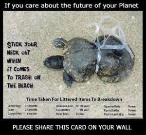 ocean de plastique environnement environnemental écologique durable pollution