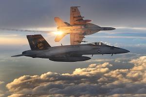 cf-18 f18 avions militaires forces armées canadiennes armée avion militaire