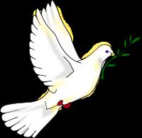 Peace_dove paix journée internationale