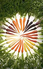 manger des carottes conséquences et bienfaits