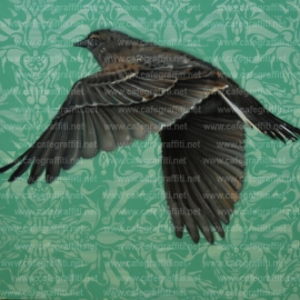 arpi-fly-away-murale street art urban graffiti