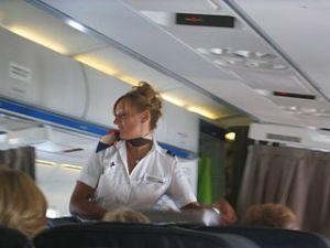 stewardess hotesse de l'air steward