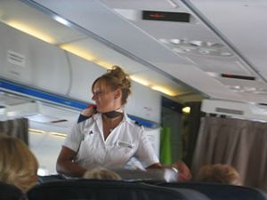 stewardess hotesse de l'air steward