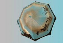parapluie skizo association canadienne maladie mentale estime de soi trains