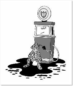 maree_noire pétrole prix essence environnement